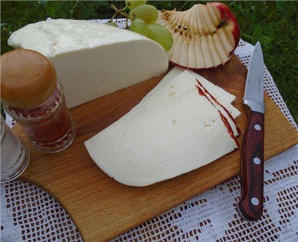 Ovčí syr