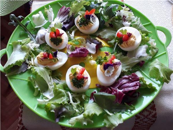 Vajíčko ako predjedlo